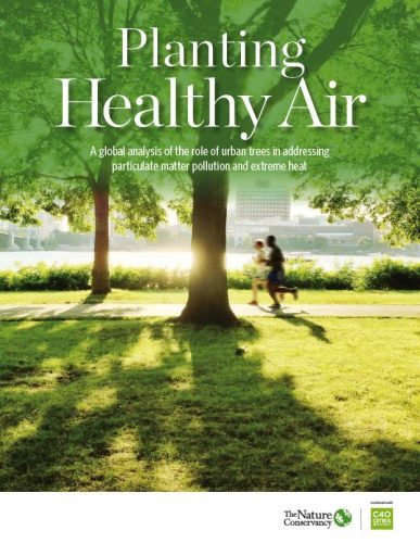 Planting Healthy Air