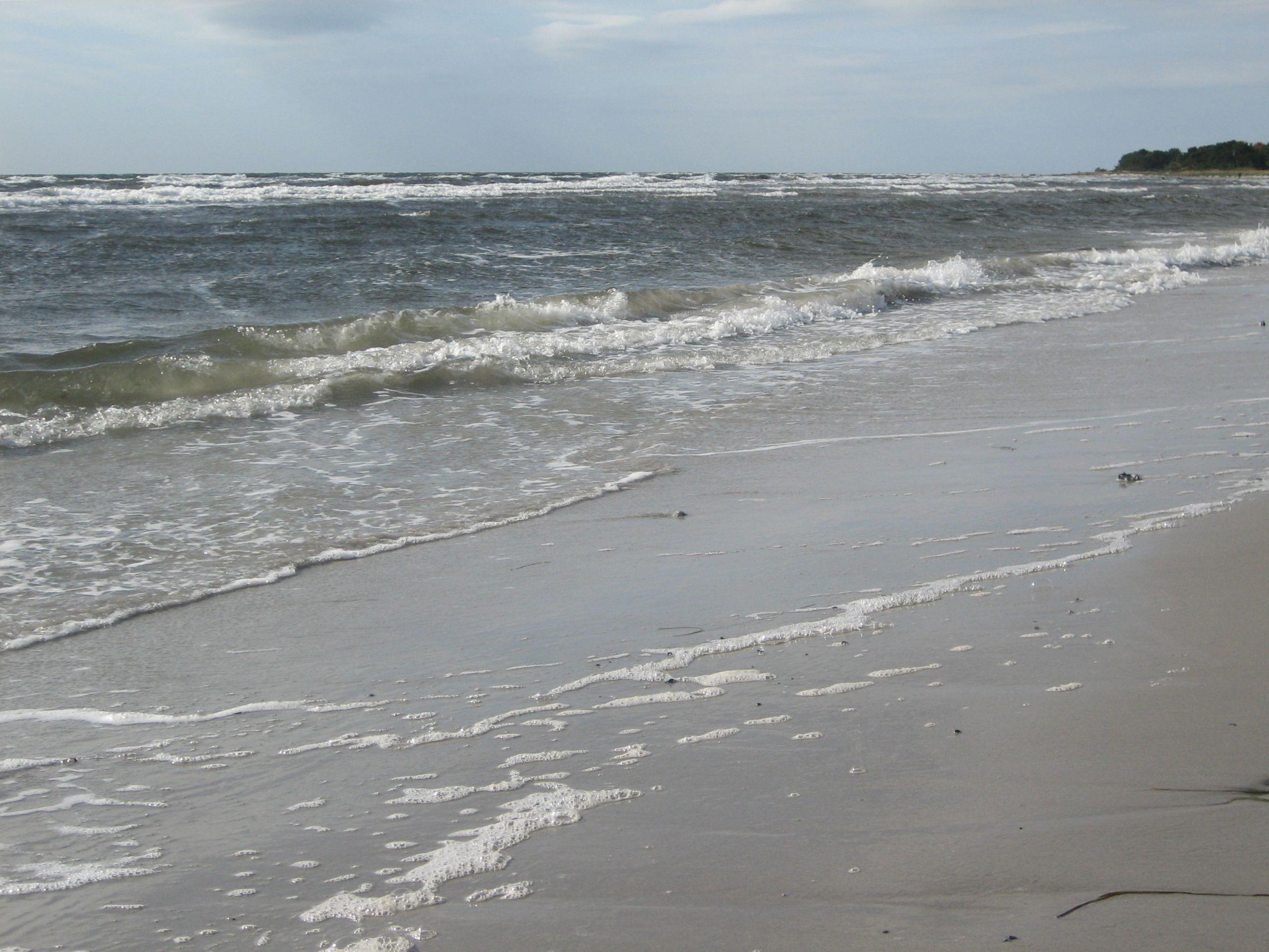 Havet vid Böste och strandlinjen