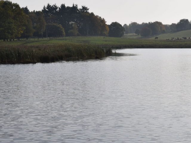 Christinehofs ekopark, Borstakärr våtmarker