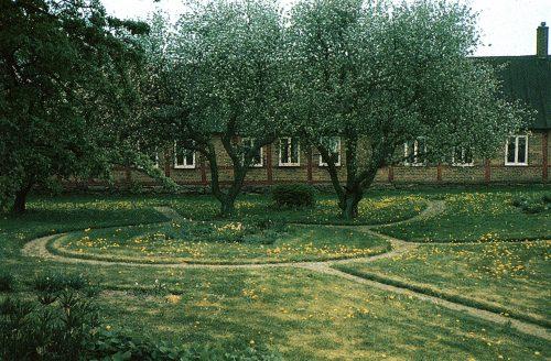 allmogeträdgård med äppleträd