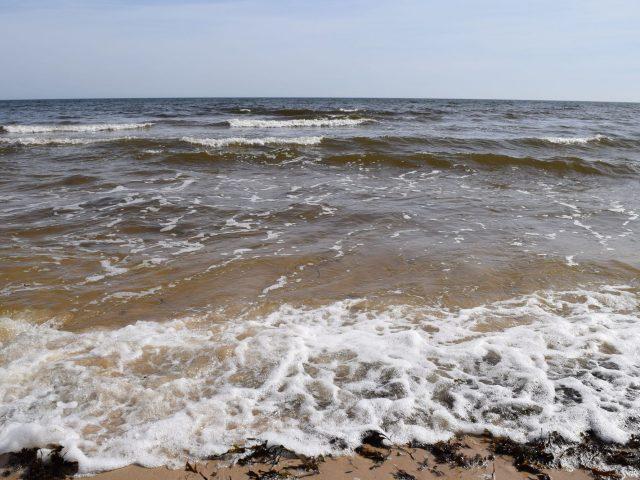 Havet vid Stenshuvud
