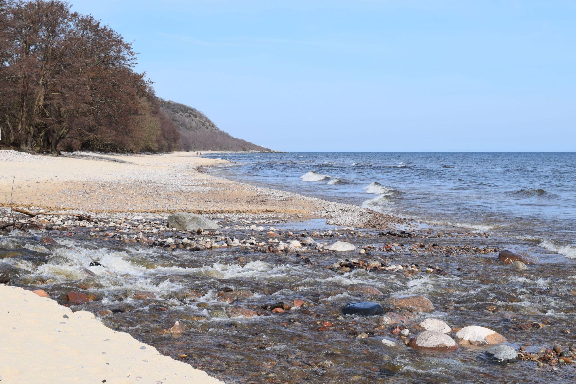 Stranden söder om Stenshuvud