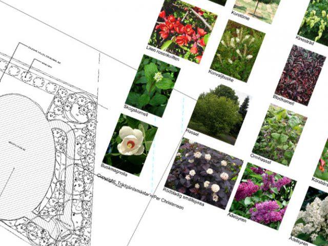 Trädgårdsdesign, skissförslag och arbetsritningar