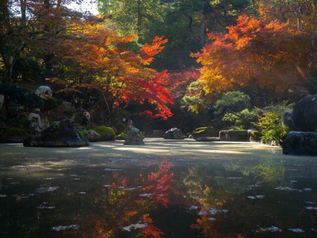 Japanska trädgårdar